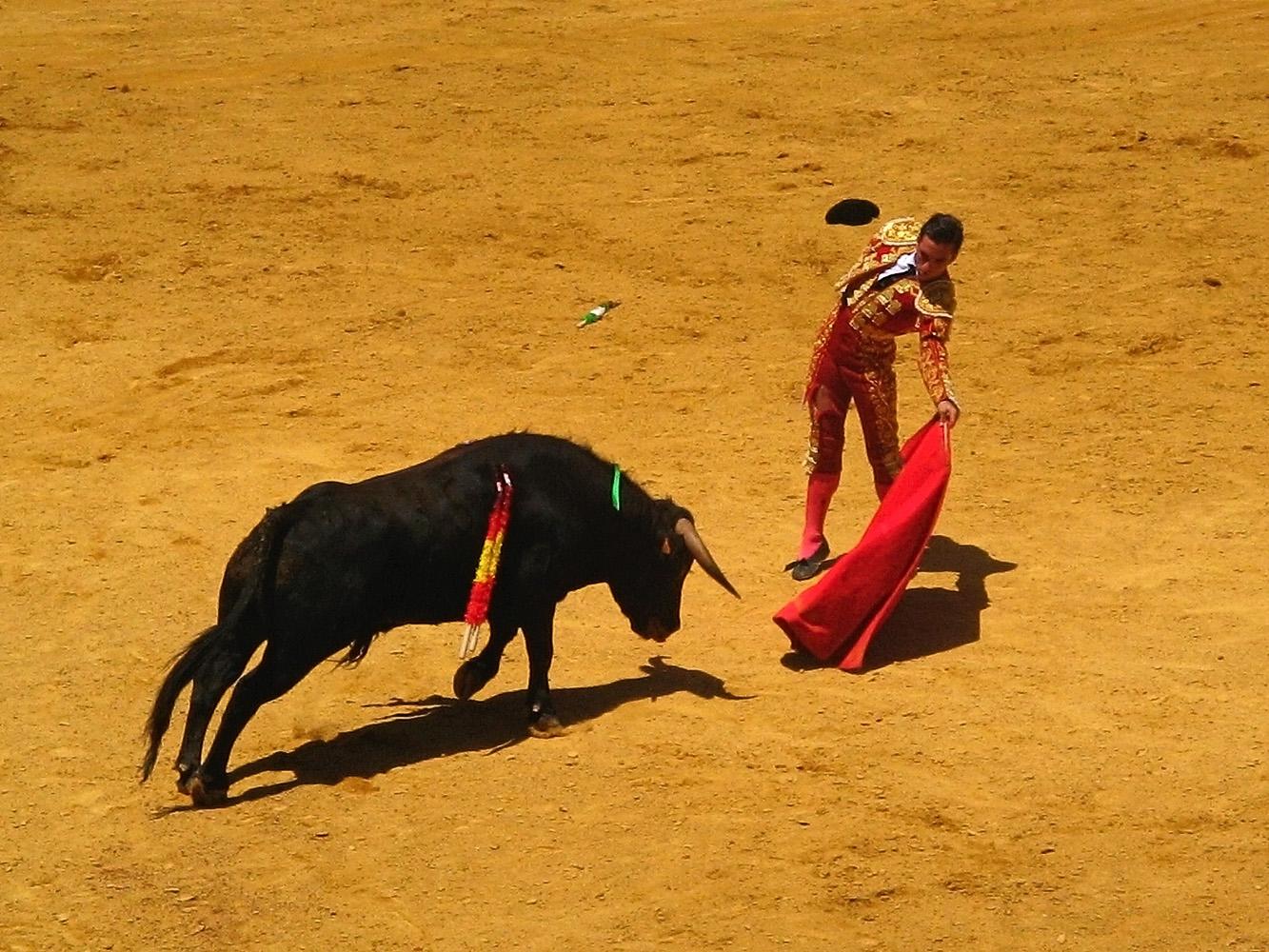 Spain Entertainment